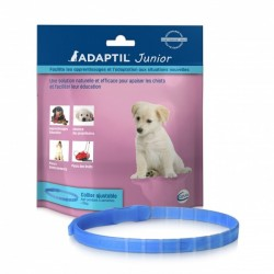 Adaptil collier junior