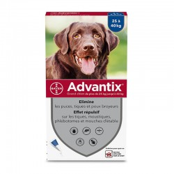 Advantix Grand Chien de 25...